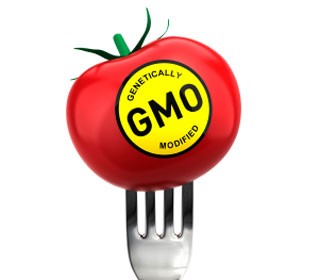 The Ultimate GMO